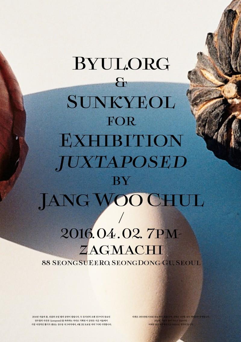 20160402-Woochul-Poster-47-41x58cm
